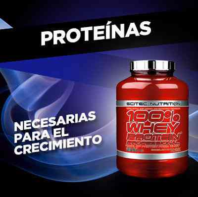 banner-proteinas