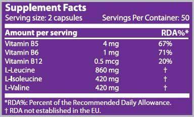 Información nutricional aminoácido BCAA 1000