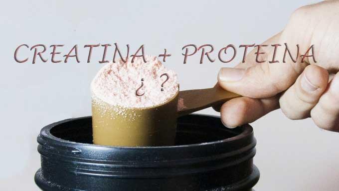 tomar creatina y proteina
