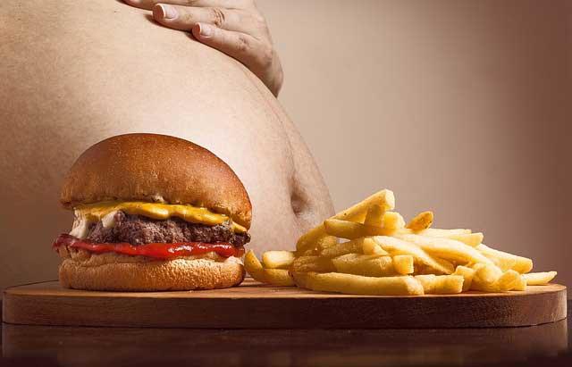 causas y consecuencias de la obesidad y sobrepeso