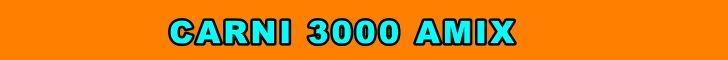 carni 3000 amix
