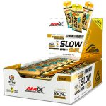 Slow-Gel-Palatinosa-Amix-Performance