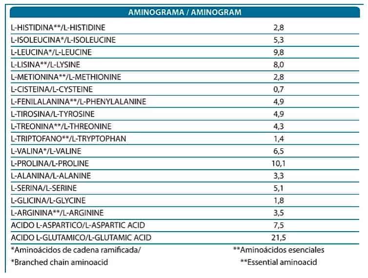 Micellar-Casein-Premium-X-UP-aminograma