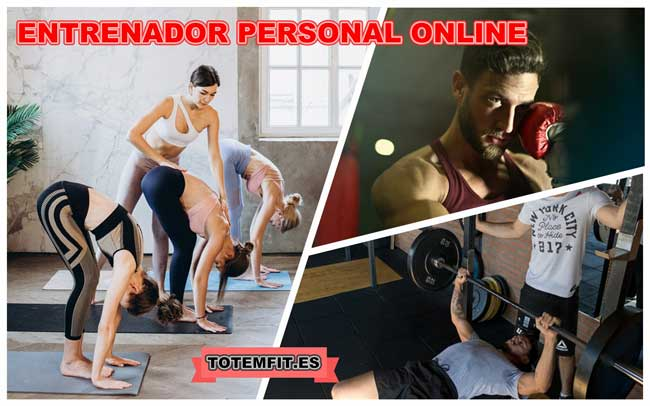 vyrtual personal trainer
