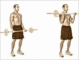 curl de biceps en barra recta