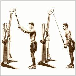 triceps polea alta cuerda