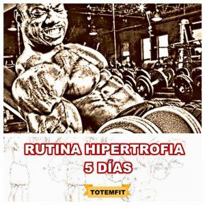 rutina hipertrofia 5 dias