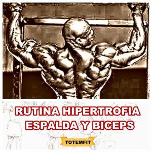 rutina hipertrofia espalda y biceps