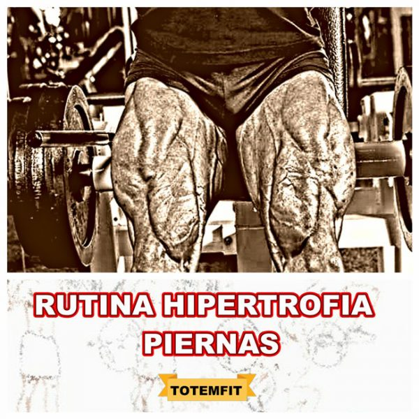 rutina hipertrofia piernas